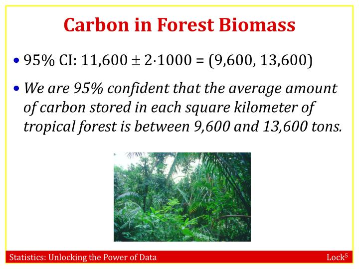 Carbon in Forest Biomass