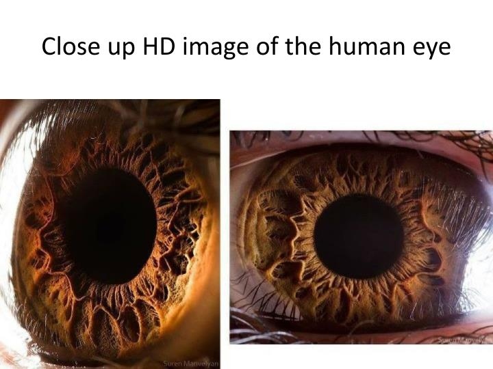 Close up HD image of the human eye