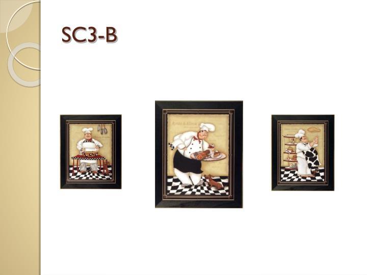 SC3-B
