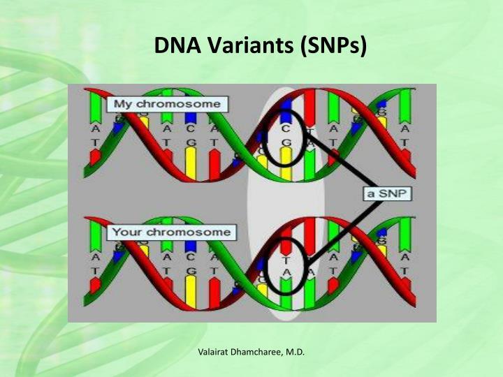 DNA Variants (SNPs)