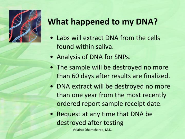 What happened to my DNA?