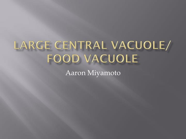 Large central vacuole food vacuole