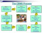 the cbms process