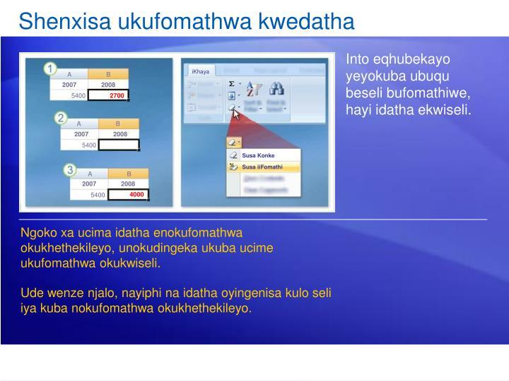Shenxisa ukufomathwa kwedatha