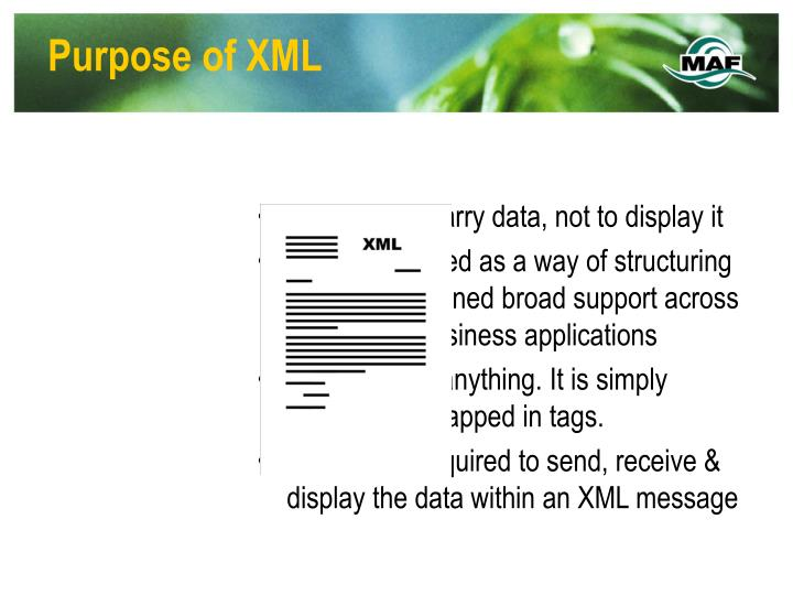 Purpose of XML