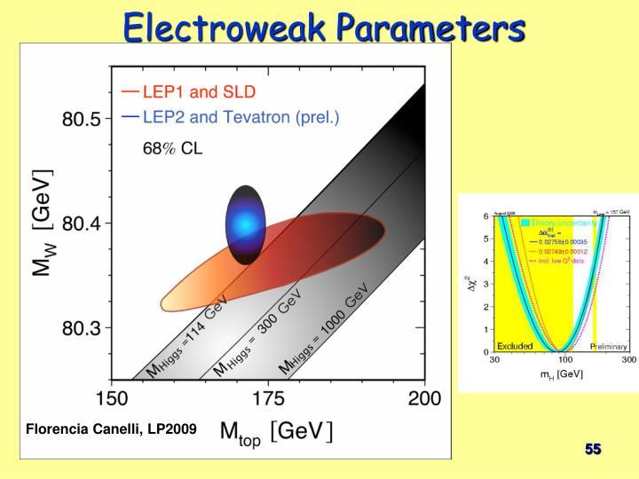 Electroweak Parameters