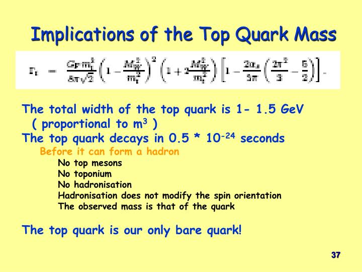 Implications of the Top Quark Mass