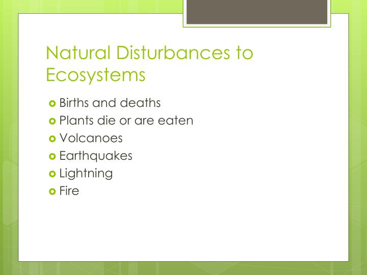 Natural disturbances to ecosystems