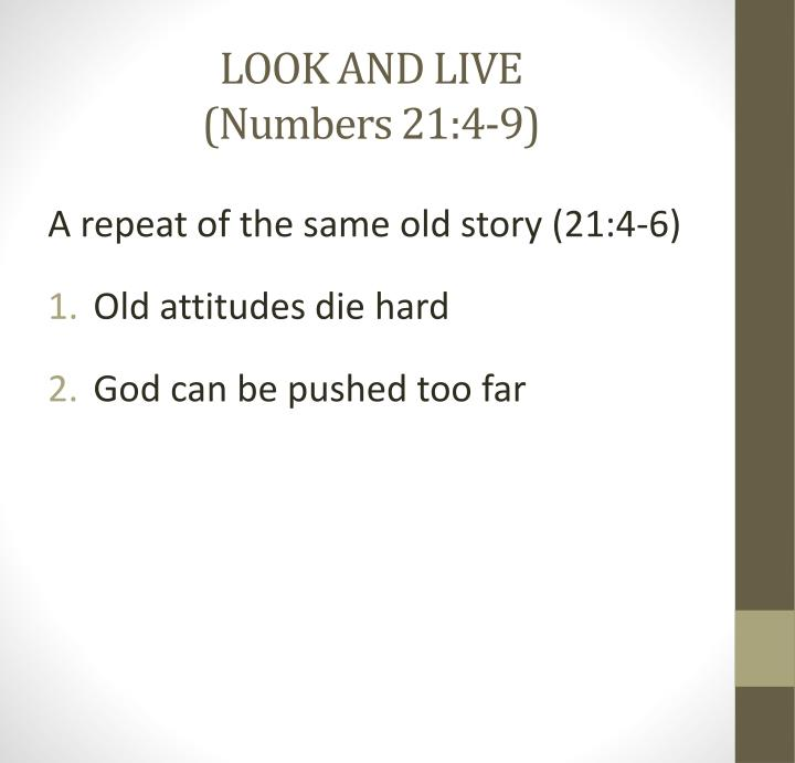 LOOK AND LIVE
