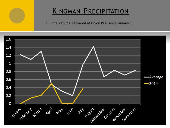 Kingman Precipitation