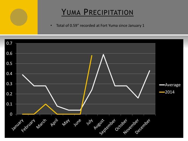 Yuma Precipitation