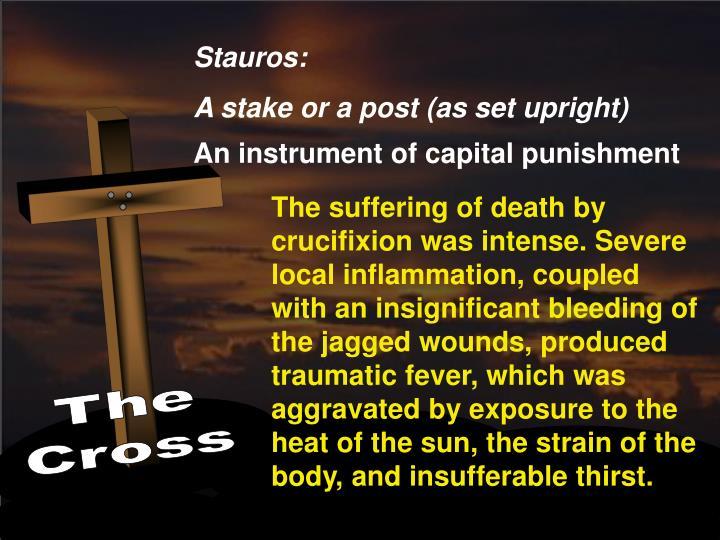 Stauros