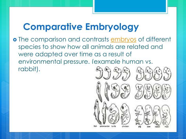 Comparative Embryology
