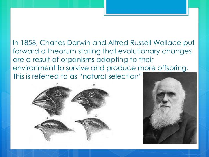 In 1858, Charles Darwin and Alfred Russell Wallace put forward a