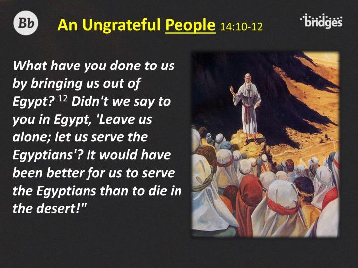 An Ungrateful