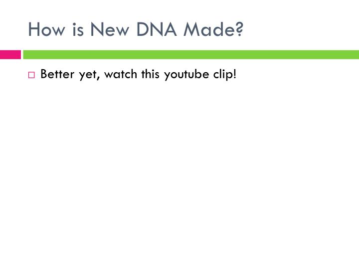 How is New DNA Made?
