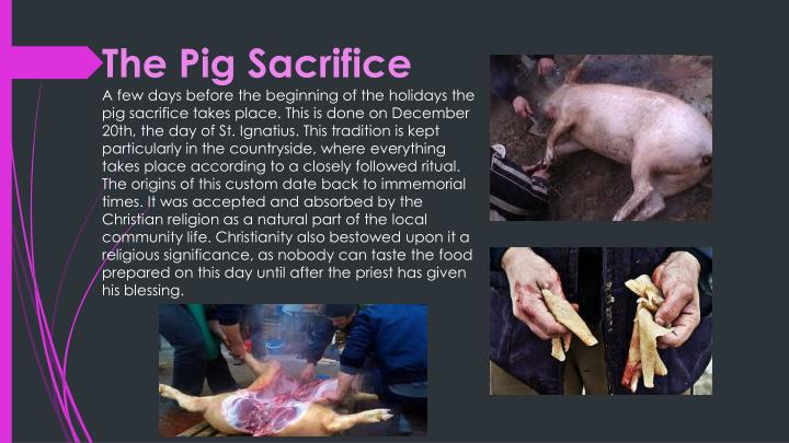 The Pig Sacrifice