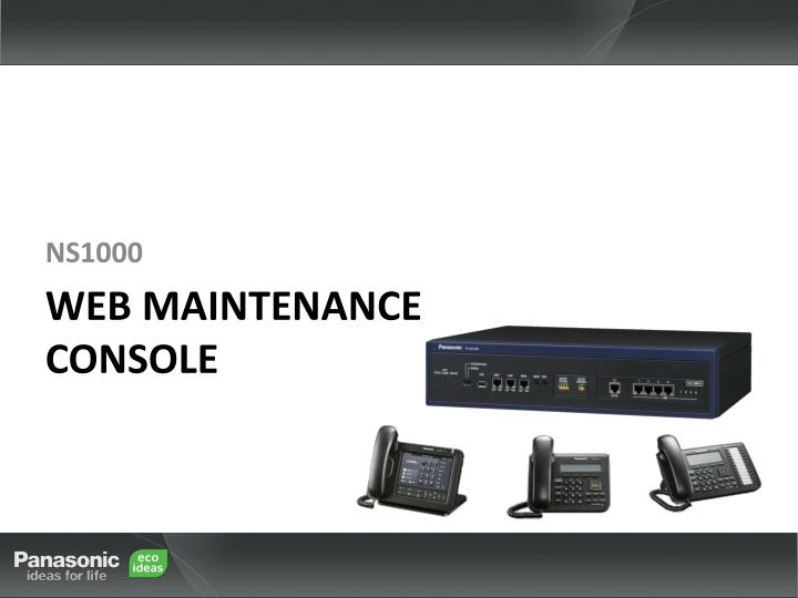 Web maintenance console