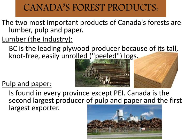 CANADA'S FOREST PRODUCTS: