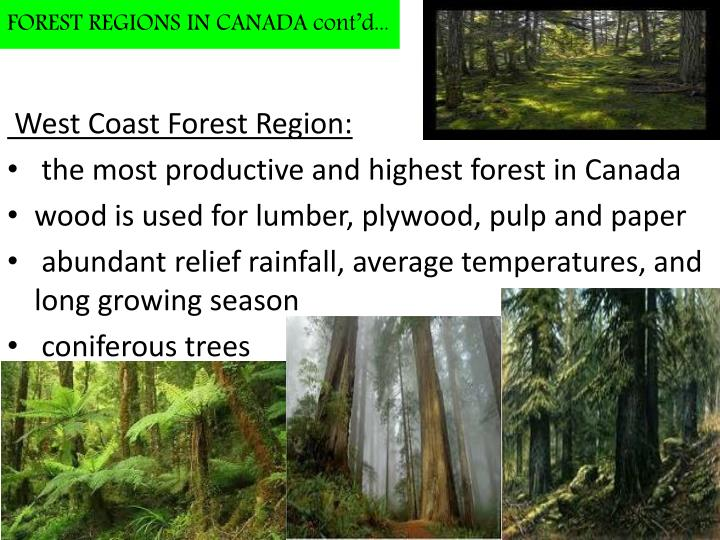 FOREST REGIONS IN CANADA cont'd...