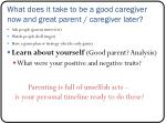 what does it take to be a good caregiver now and great parent caregiver later3