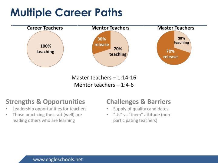 Multiple Career Paths