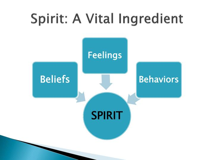 Spirit: A Vital Ingredient