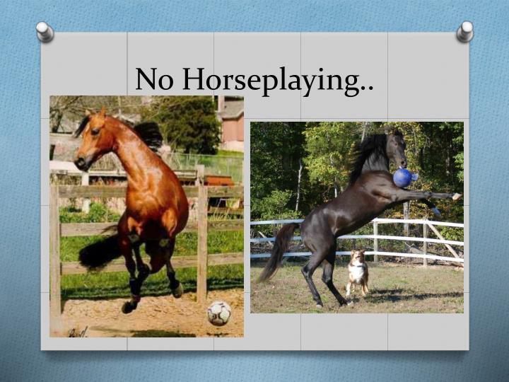 No Horseplaying..