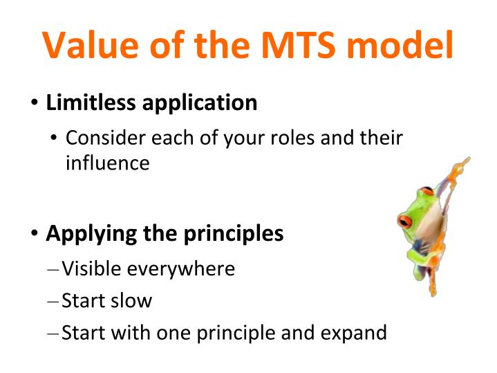 Value of the MTS model