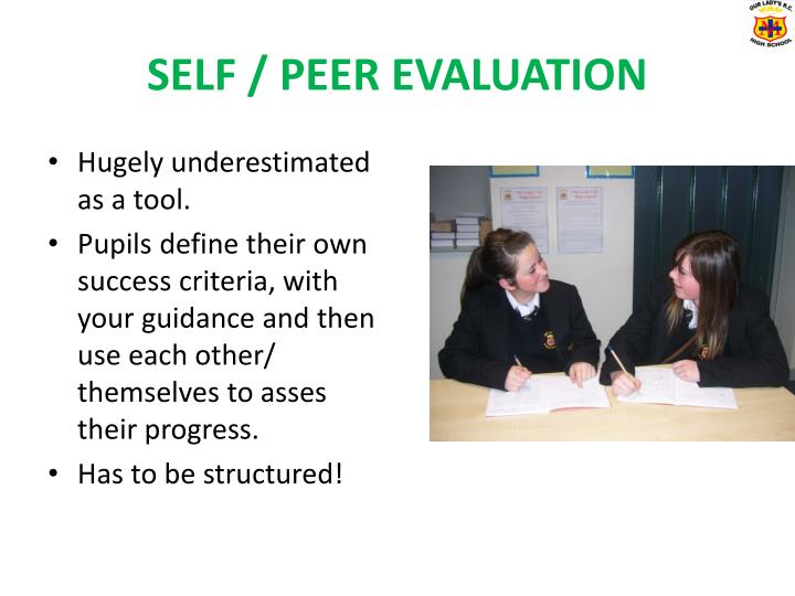 SELF / PEER EVALUATION
