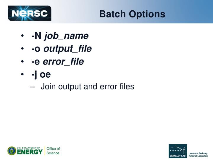 Batch Options