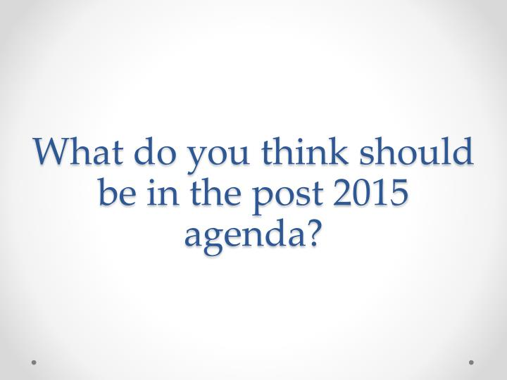 What do you think should be in the post 2015 agenda?