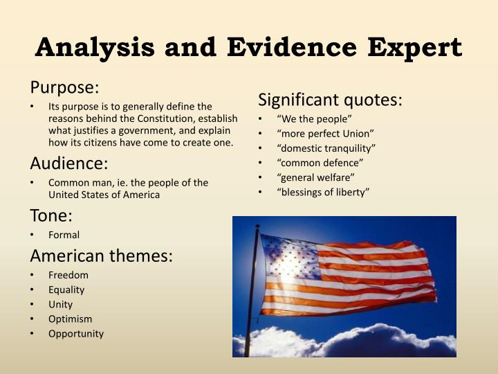 Analysis and Evidence Expert