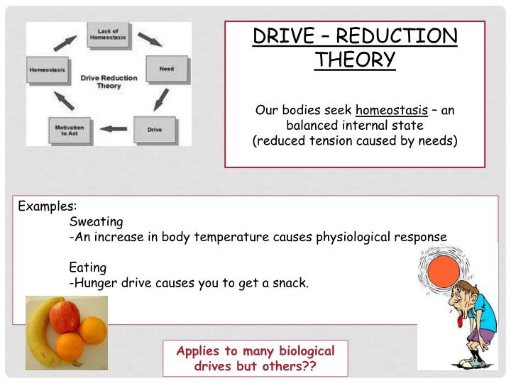 DRIVE – REDUCTION THEORY