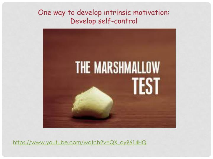 One way to develop intrinsic motivation: