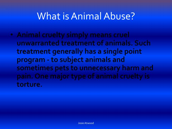 What is animal abuse