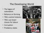 the developing world