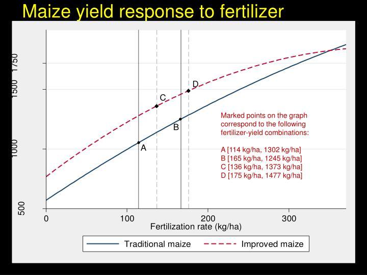 Maize yield response to fertilizer