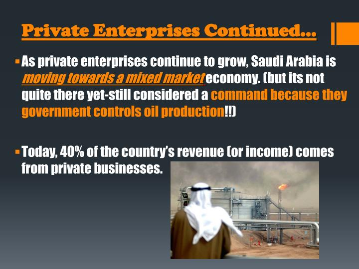 Private Enterprises Continued…