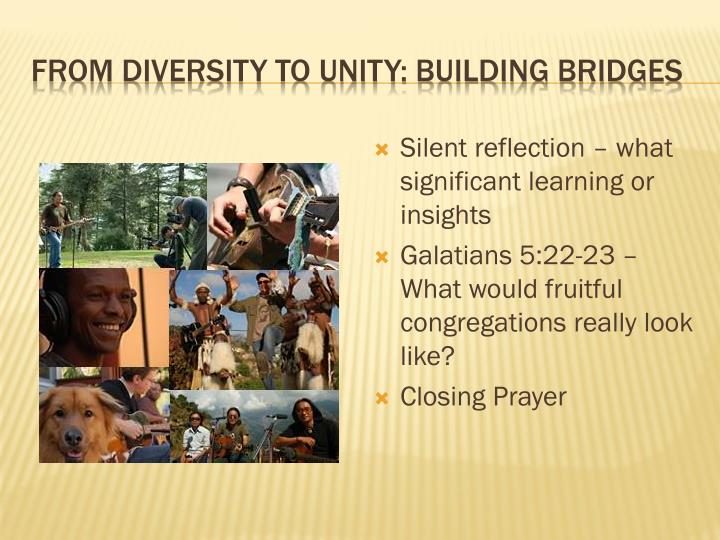 From diversity to unity: building bridges
