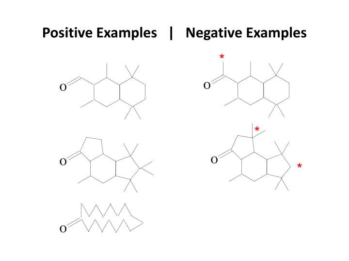 Positive Examples   |   Negative Examples