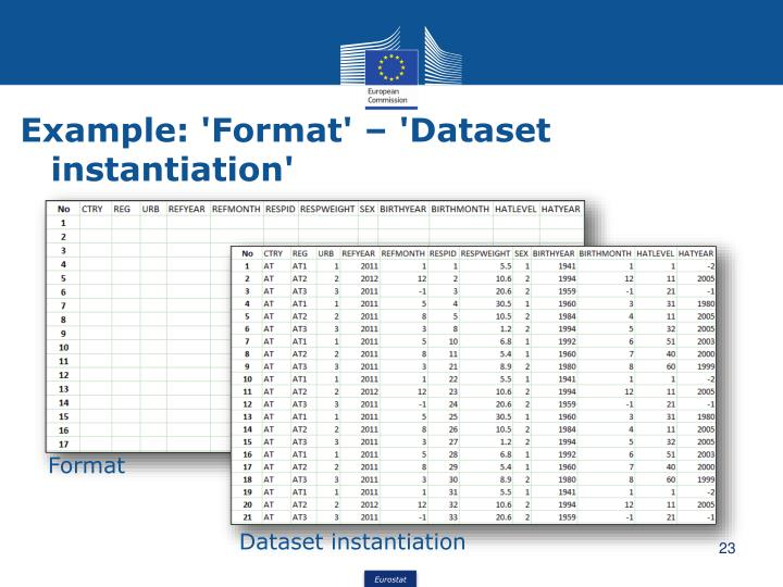 Example: 'Format' – 'Dataset instantiation'