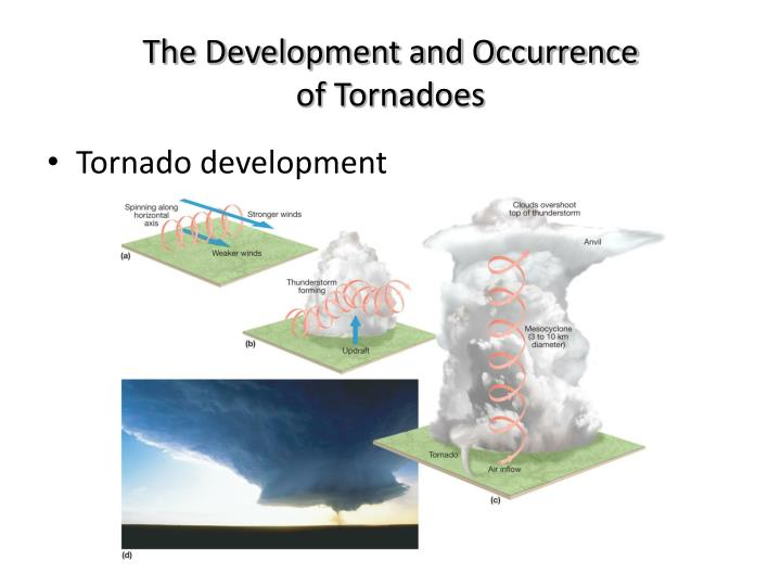 The Development and Occurrence