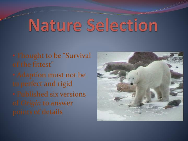Nature Selection