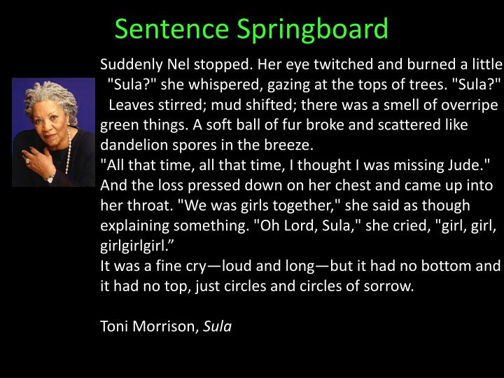 Sentence Springboard