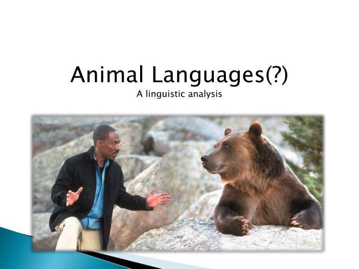 Animal Languages(?)