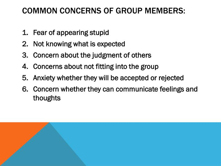 Common concerns of group members: