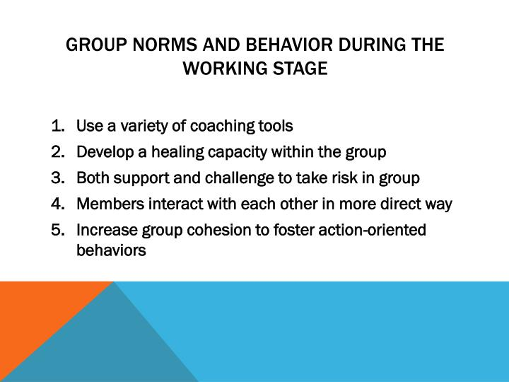 Group norms and behavior during the working stage