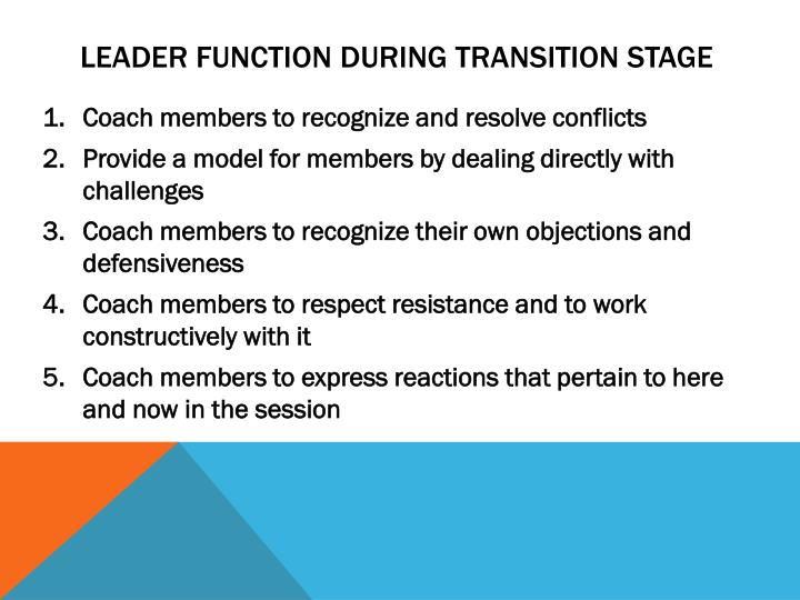 Leader function during transition stage