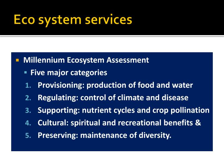 Eco system services